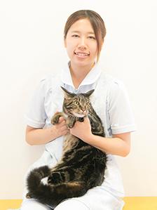 看護師塚本 紗弓Sayumi Tukamoto